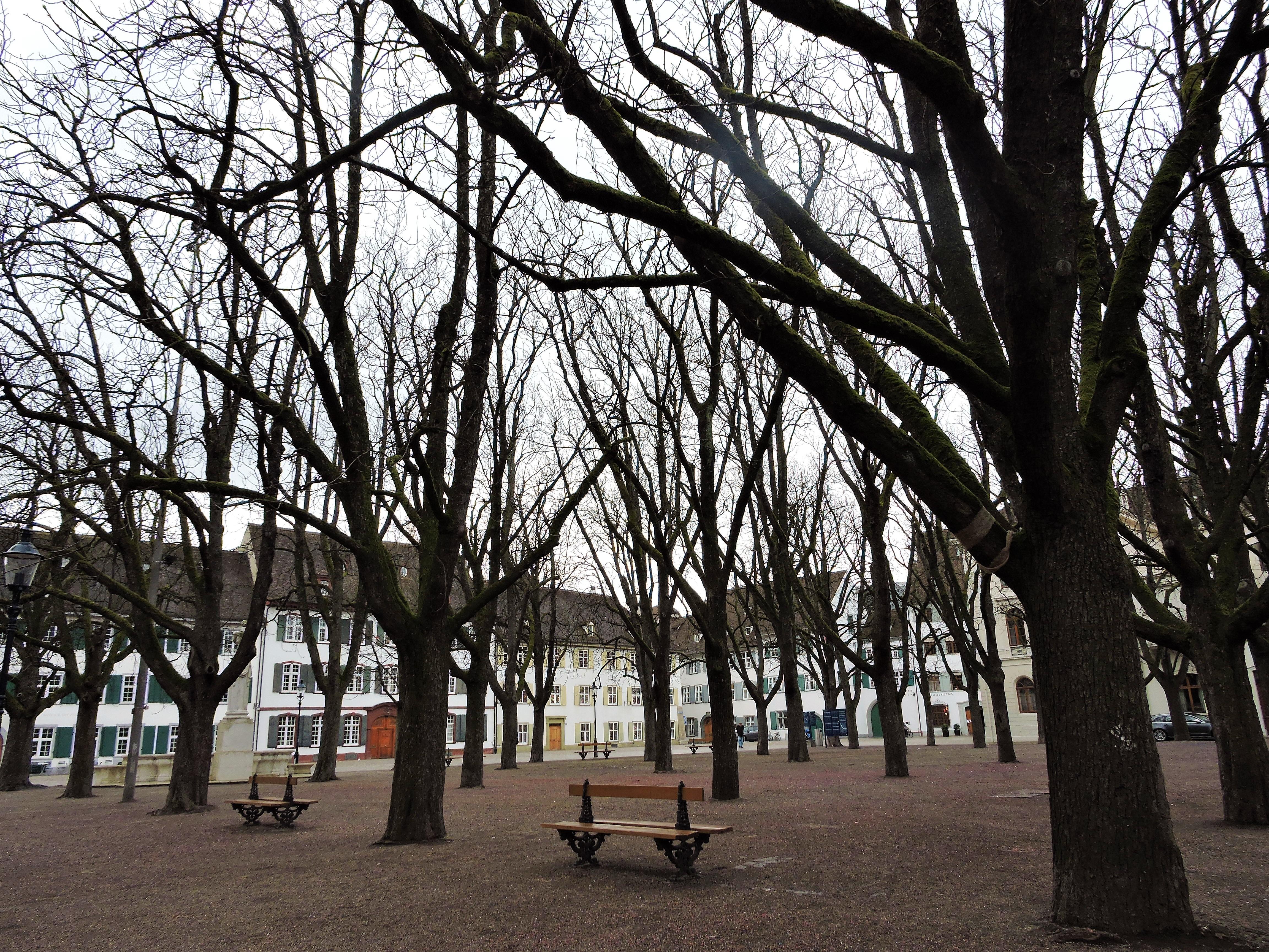 Plaza near the Munster Church Basel