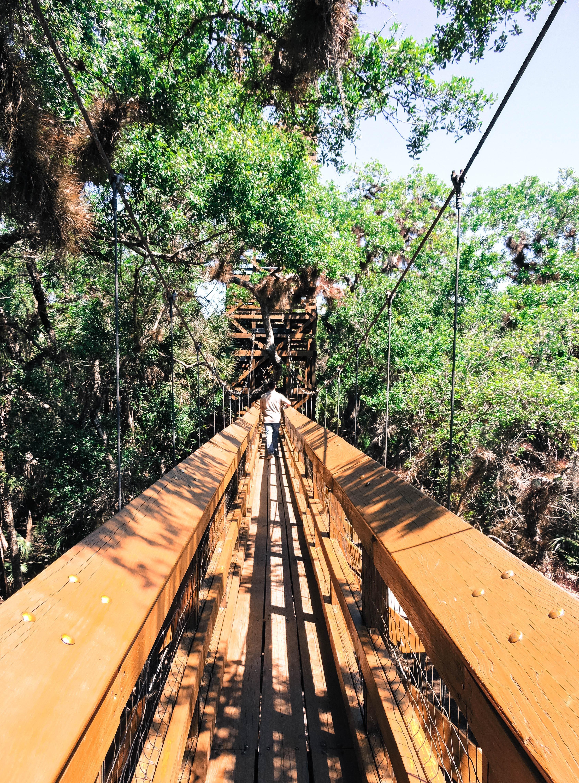 Crossing Myakka Canopy Walkway