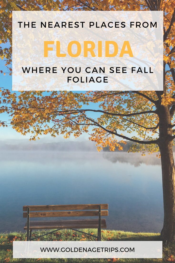 Florida doesn't have your usual seasons, but if you keep reading you can find out about places from and close to Florida where you can see Fall Foliage.