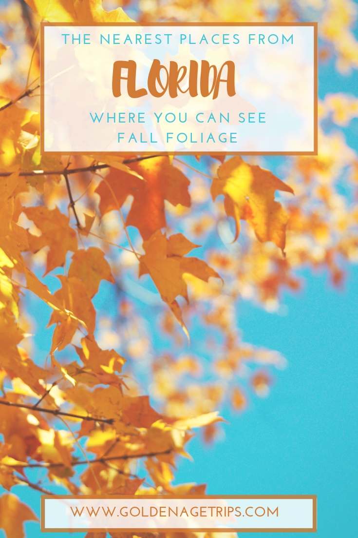 Florida doesn't have your usual seasons, but if you keep reading you can find out about places from and close to Florida where you can see Fall Foliage. #Florida #Fall #FloridaFall #FallFoliage
