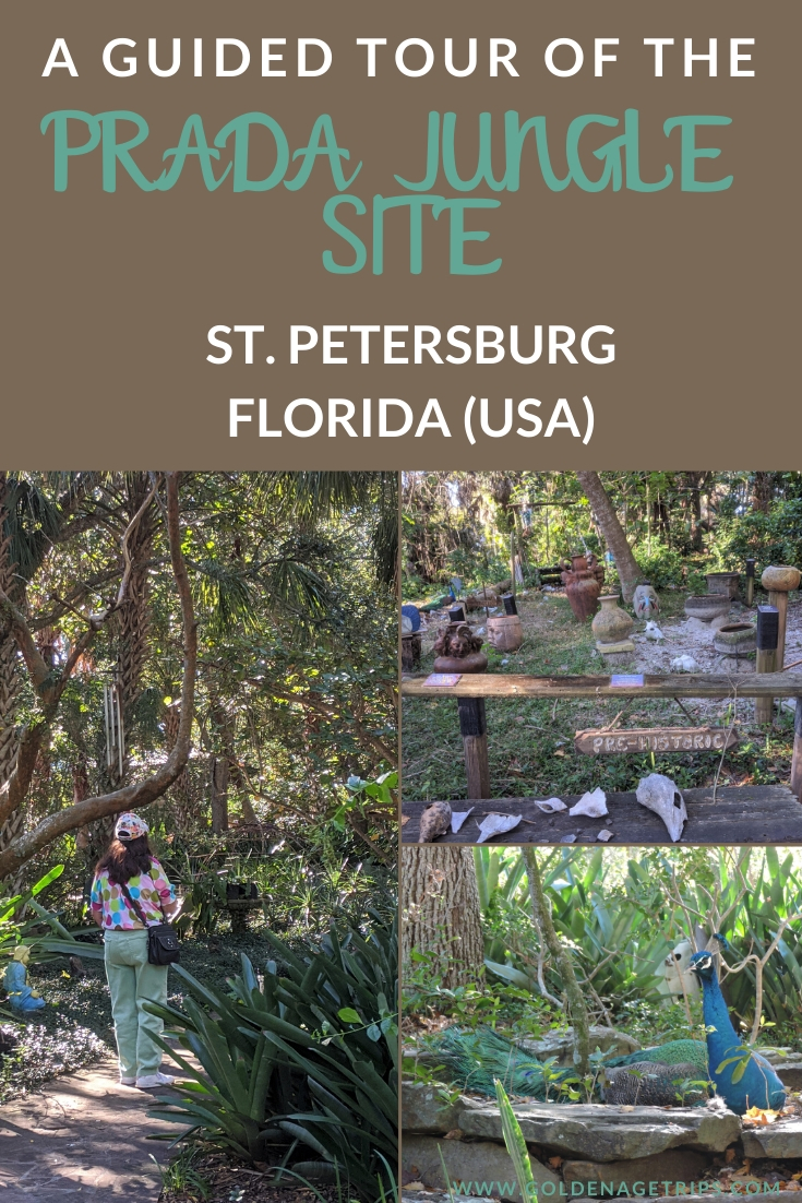 A review of the Prada Jungle Site Tour in St. Petersburg, FL. Go for its peacocks, and stay for the history of Tocobaga Indians and Spanish conquistadors. #stpetersburg #florida #tocogabaindians