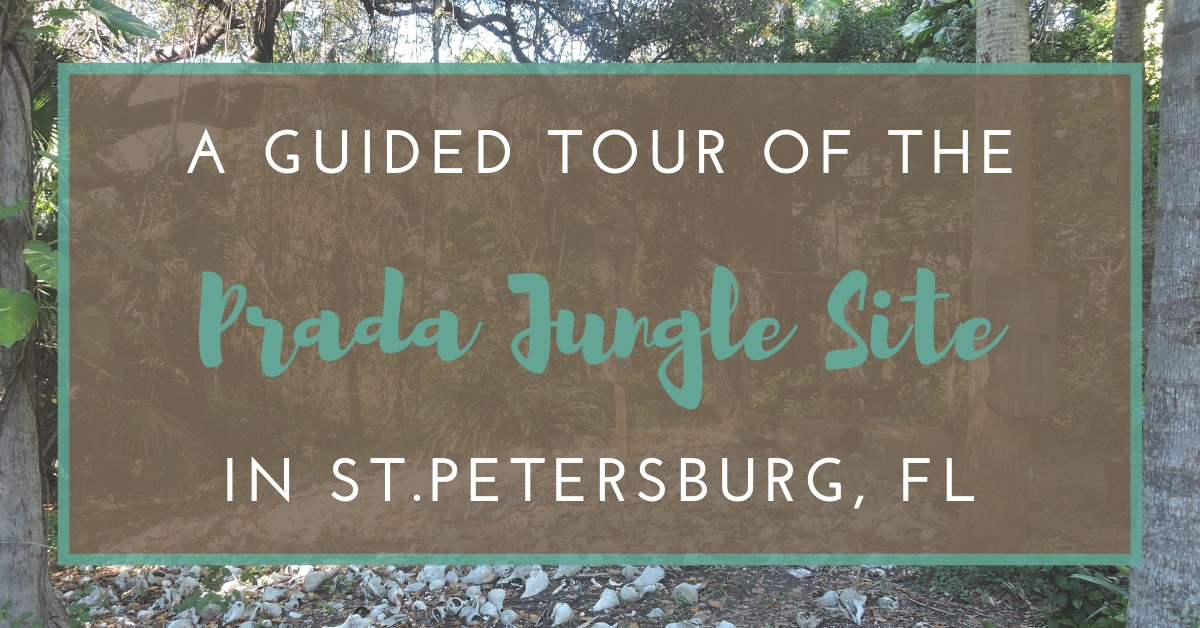 A Guided Tour of the Prada Jungle Site in St. Petersburg, Florida