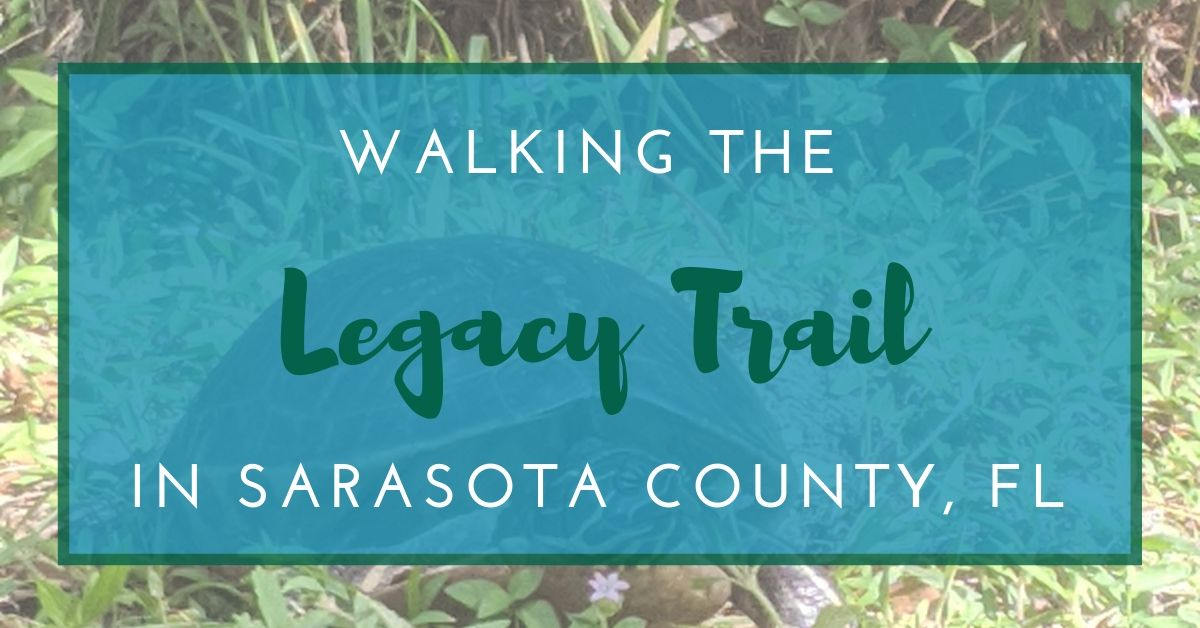 Walking the Legacy Trail in Sarasota County