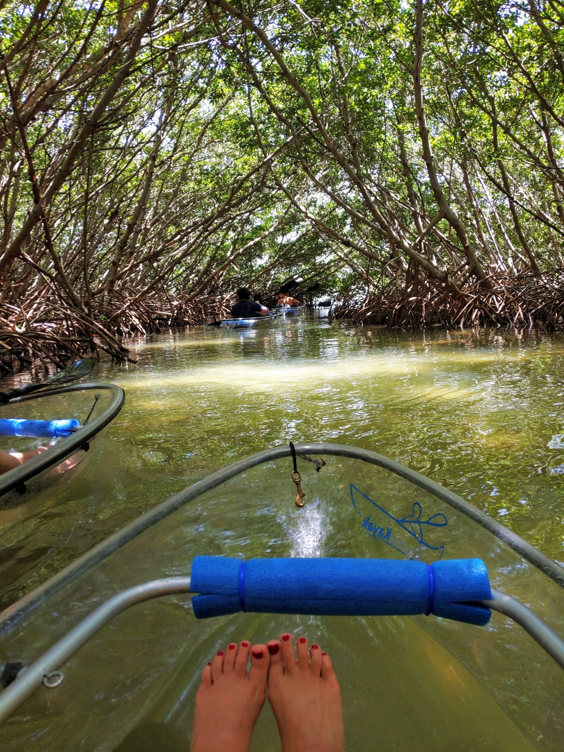 Shell Key Preserve: What You Need to Know Before You Go - Golden Age Trips