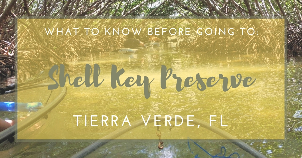 Shell Key Preserve: What You Need to Know Before You Go